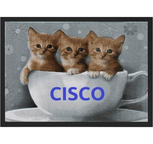 Cisco CVE-2019-1649
