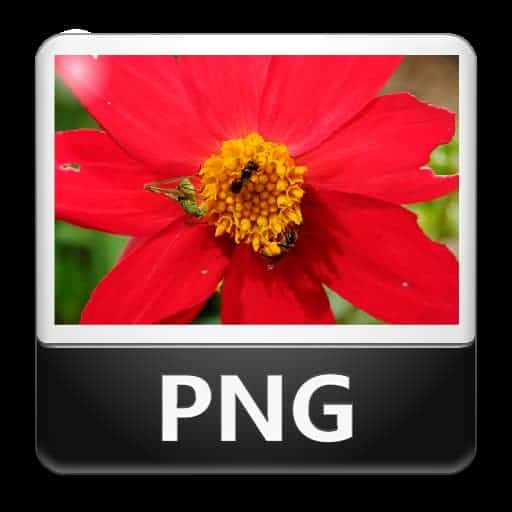 Ottimizzare immagini PNG