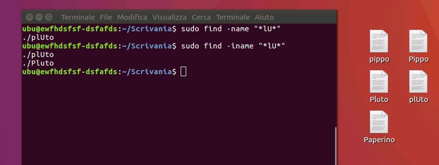 ricerca file con ubuntu