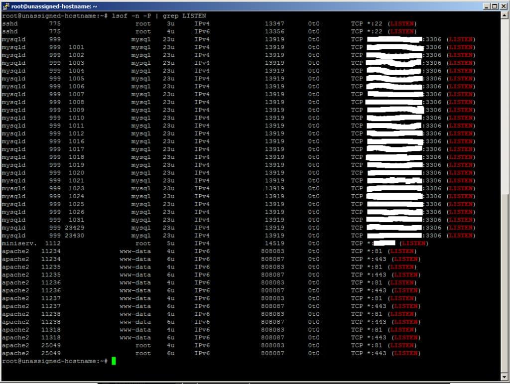 comando linux isof -n -p